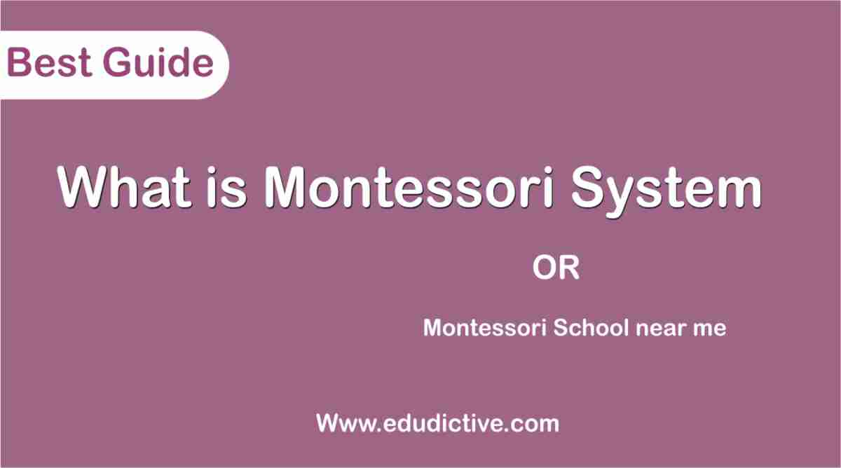 Montessori School Near Me