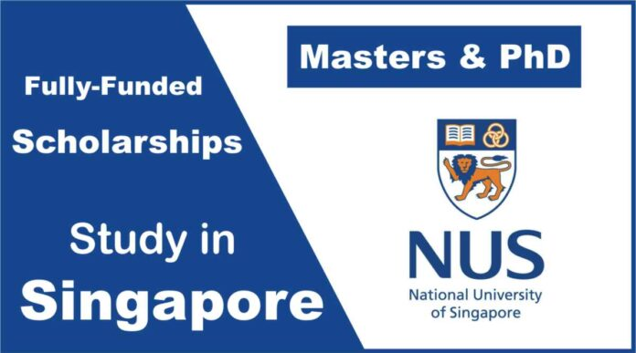 Commonwealth Scholarship at the National University of Singapore